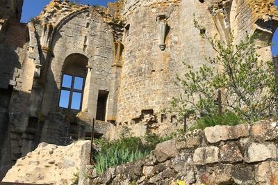 Initiation à L'analyse Du Bâti Au Château De Bourbon-l'archambault à Bourbon l'Archambault