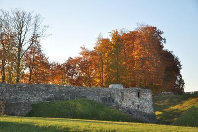 Initiation Au Tir À L'arc Au Château à Blainville Crevon