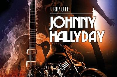 Tribute Johnny à Ollainville