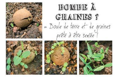 Jardiner La Rue à Angouleme