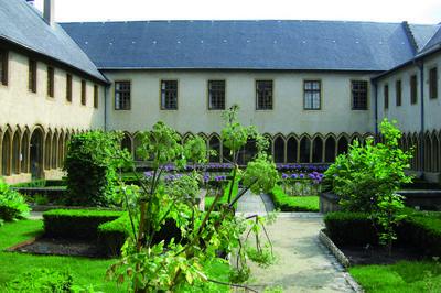 Jardins De Plantes Médicinales Et Toxiques à Metz