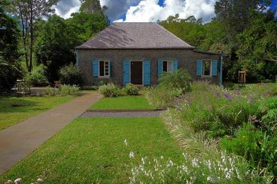 Jardins Du Musée : Découverte Botanique Des Espèces Les Plus Remarquables à Saint Gilles Les Hauts