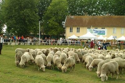Journées Agricultures & Patrimoines à Rambouillet
