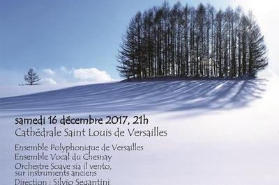 Js Bach - Oratorio De Noel à Versailles