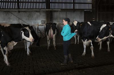 L'agriculture Bressane Photographiée Par Les Collégiens à Pierre de Bresse