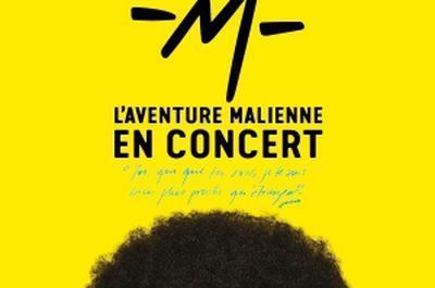 L'Aventure Malienne De -M- à Trelaze