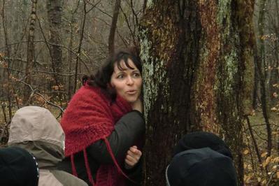 L'heure Du Conte Pour Tous : «dans Les Bois » à Yutz