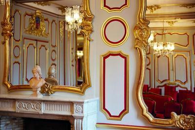 L'hôtel De Ville : Le Salon D'honneur Et La Salle Des Maires à Chalon sur Saone
