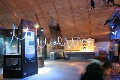 La Nuit, Au Muséum... à Blois