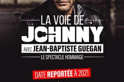 La Voie De Johnny - report à Nantes