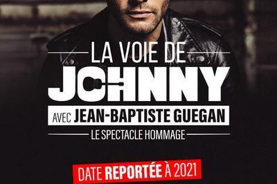 La voie de Johnny - Report à Saint Etienne