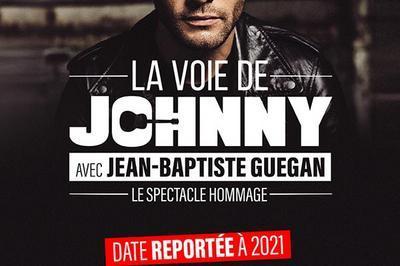 La voie de Johnny - Report à Lyon
