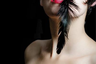 Lady Black Bird à Montpellier
