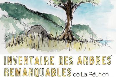 « L'inventaire Des Arbres Remarquables De La Réunion » à Sainte Rose