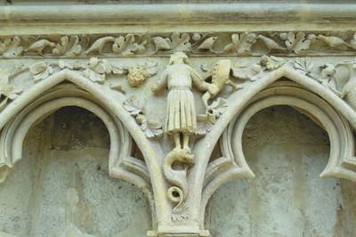 Le Bestiaire De La Cathédrale Vu Par Un Naturaliste à Bourges