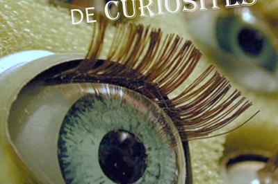 Le Cabinet de curiosités à Tours