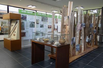 Le Centre D'archéologie Amérindienne De Kourou