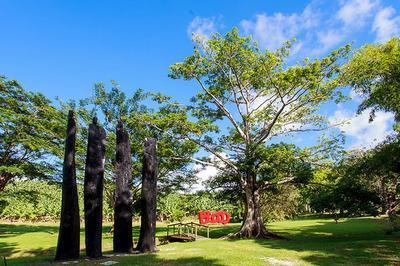 Habitation Clément - Visite Commentée Du Jardin Des Sculptures à Le Francois