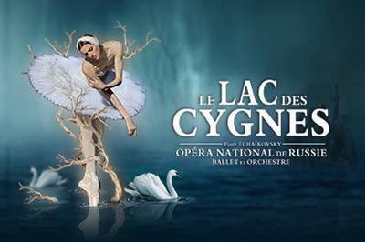 Le Lac Des Cygnes à Brest