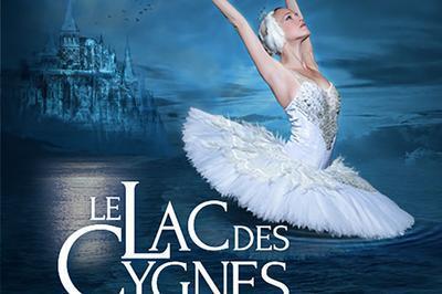 Le Lac Des Cygnes à Nantes