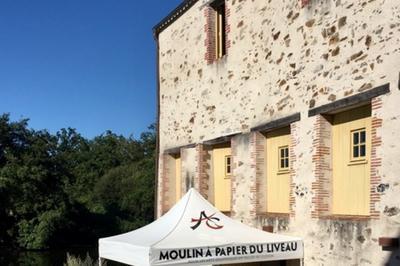 Le Moulin Du Liveau à Gorges