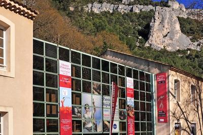 Le Musée D'histoire Jean Garcin Partage Ses Réserves ! à Fontaine de Vaucluse
