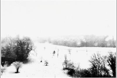 Le Réel Ne Se Prépare Pas, Il Se Fait Cueillir - Atelier Photographique Familial Avec L'artiste Régis Feugère à Angouleme