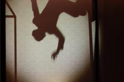 Le rêve d'une ombre à Amiens