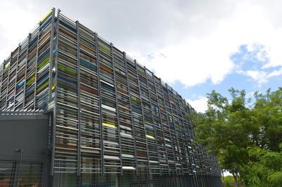 Les Archives, Un Patrimoine Pour Tous! à Gourbeyre