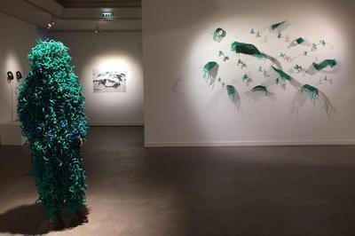 Les Endimanchés - Installation de Cécile Borne à Langonnet
