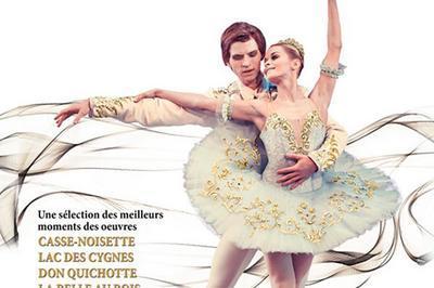 Les grands ballets classiques à Paris 17ème