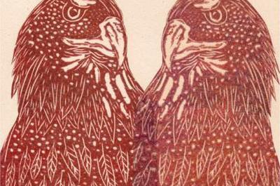 Les oiseaux à Lagny sur Marne