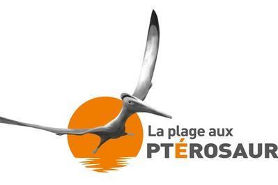Les Secrets De La Plage Aux Ptérosaures à Crayssac