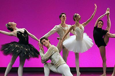 Les Solistes Du Ballet à Colombes