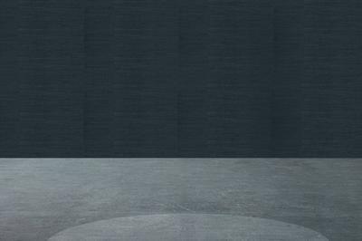 Les Yeux Dans Les étoiles ! Quatre Oeuvres Rétroéclairées De L'artiste Guillaume Bottazzi à Lyon