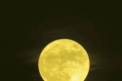 Lune Jaune, Ou La Ballade De Leila Et Lee à Avignon