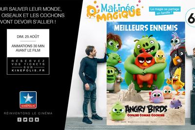 Matinée Magique : Angry Birds 2 à Rouen