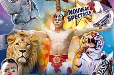 Medrano - Festival International Du Cirque à Ajaccio