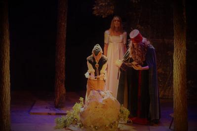Merlin L'enchanteur à Bordeaux du 24 au 28 décembre 2020