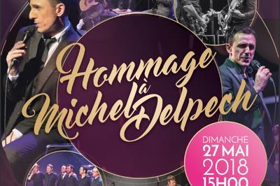 Michel Delpech - Fête des Mères à Cernay la Ville