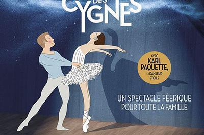 Mon Premier Lac Des Cygnes à Toulouse