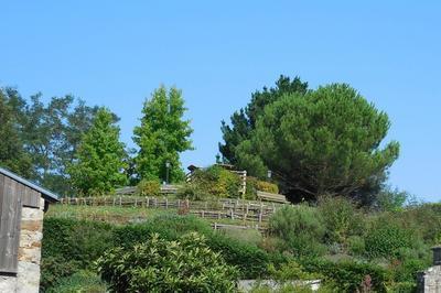 Motte Féodale à Montfaucon
