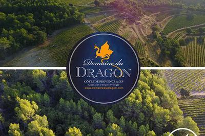 Musique Indienne Domaine Du Dragon à Draguignan