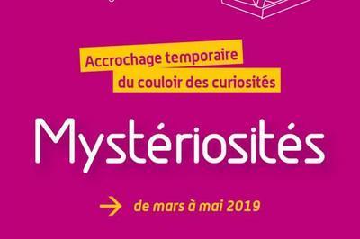 Mystériosités - Accrochage temporaire du Couloir des curiosités à Valence