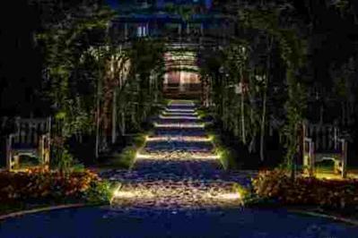 Nocturne Dans Le Jardin Du Musée Albert-kahn à Boulogne Billancourt