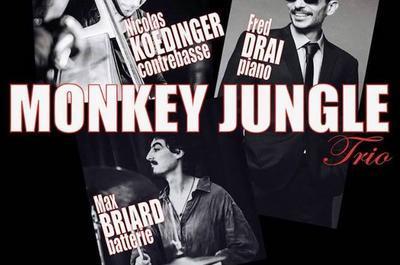 Monkey Jungle Trio à Marseille