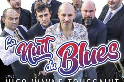 Nuit Du Blues à Biarritz