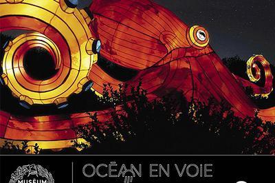 Océan en voie d'illumination à Paris 5ème