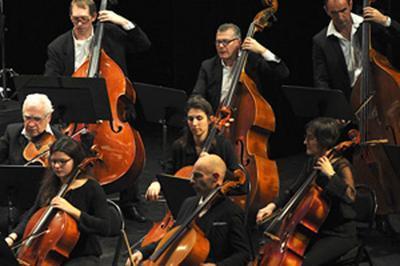 Orchestre Melun Val De Seine à Le Mee sur Seine