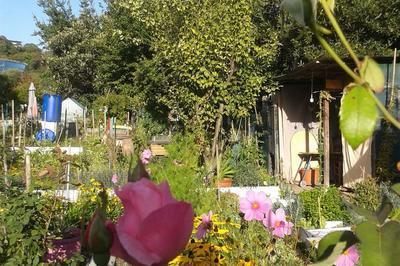 Ouverture Des Jardins Familiaux De La Pointe De L'île à Issy les Moulineaux